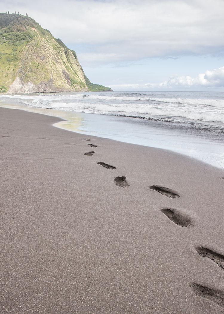 Waipio-Black-Sand-Beach