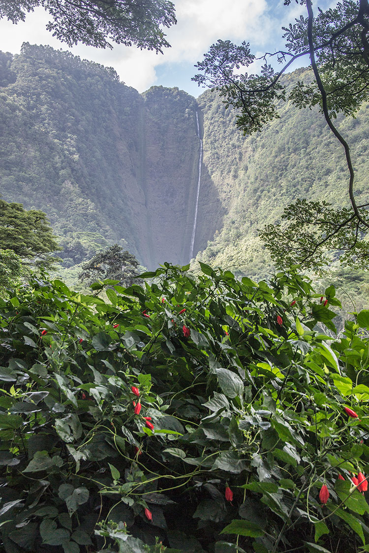 Waipio-Valley-Falls