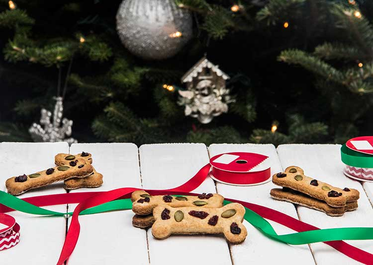 Calvins-Christmas-Cookie-Dog-Treat