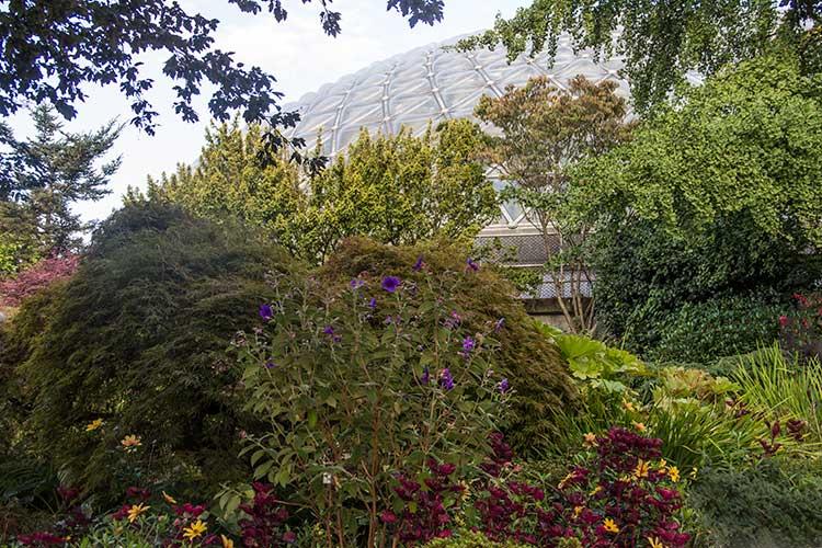 Queen-Elizabeth-Park-Bloedel-Conservatory