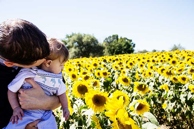 baby-and-dad-gazing-at-sunflowers