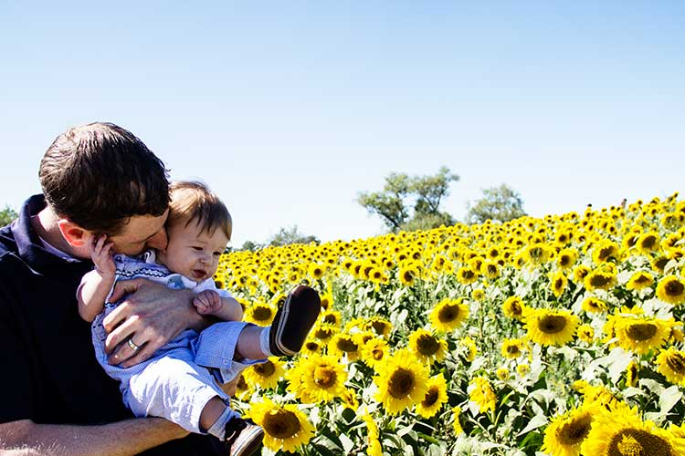 father-and-baby-field-of-sunflowers