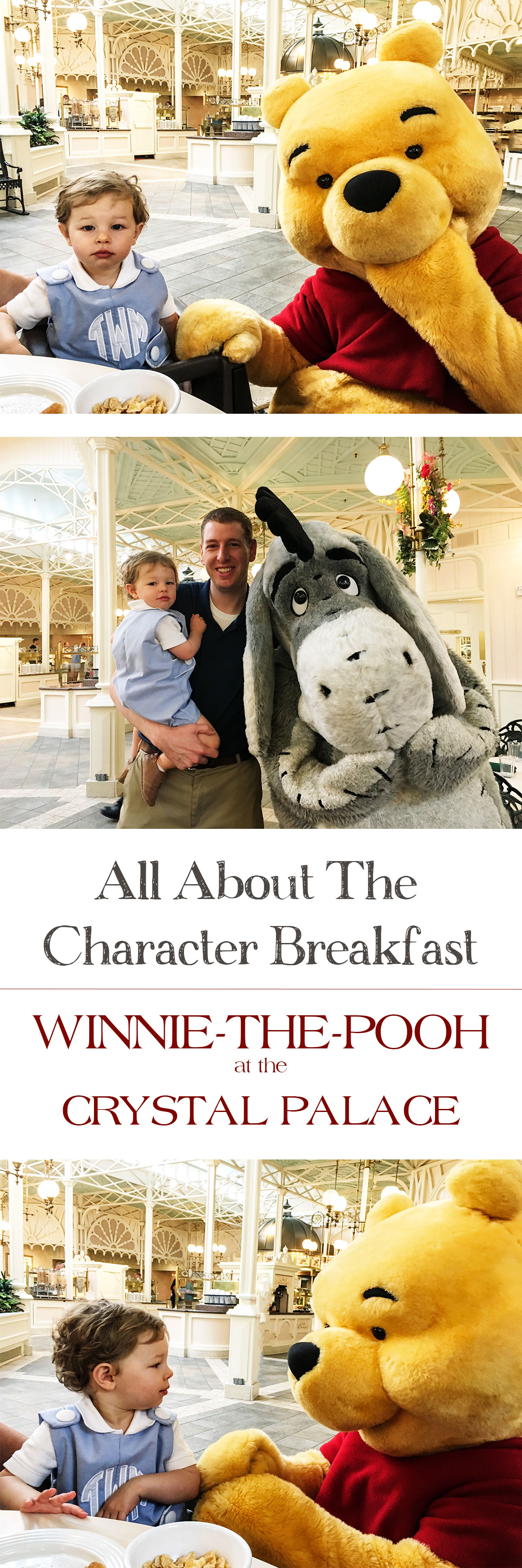 All-About-the-Character-Breakfast-Winnie-the-Pooh-Crystal-Palace