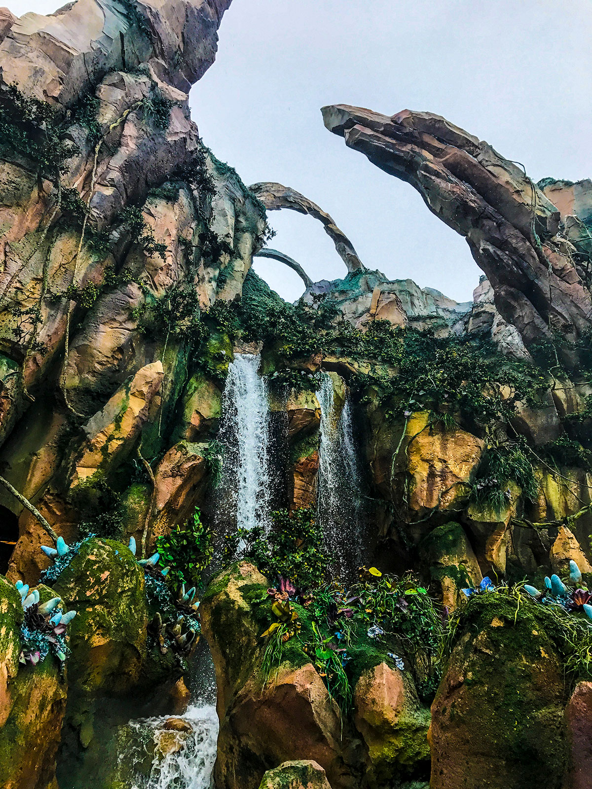 Pandora-World-of-Avatar