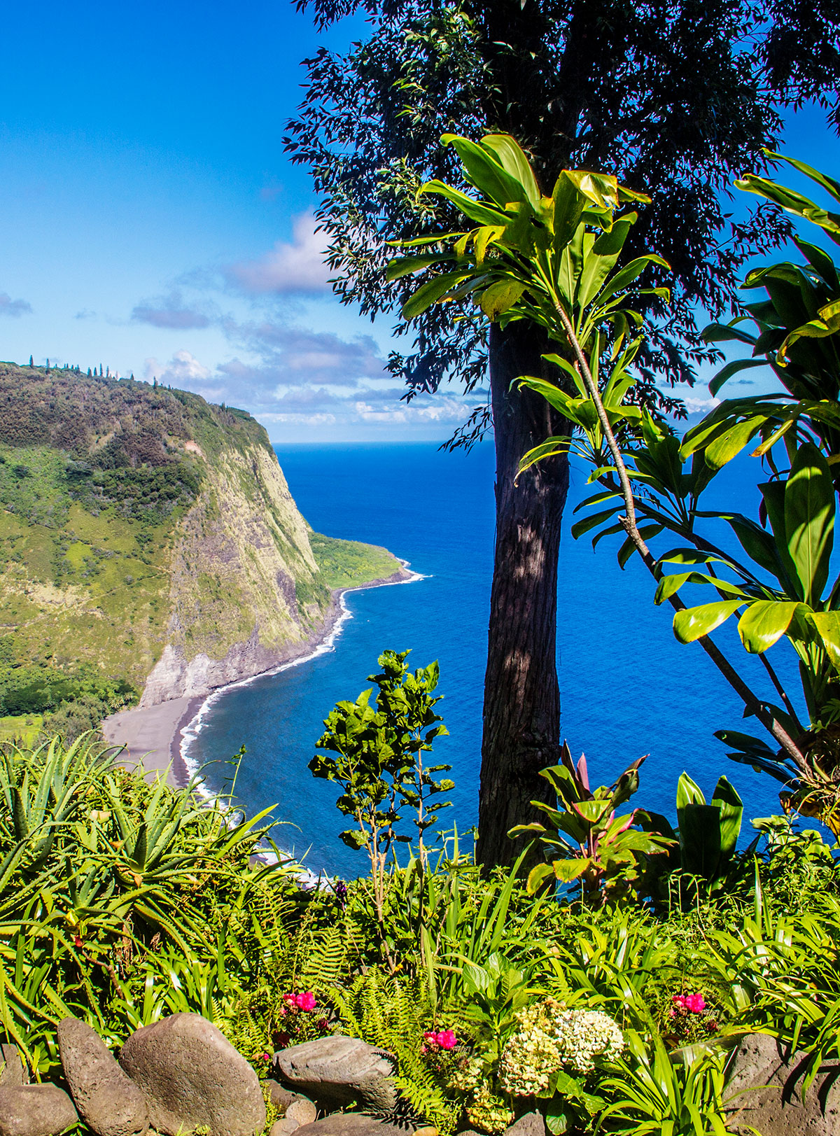 7-Wonders-of-Waipio-Valley-That-Will-Take-Your-Breath-Away