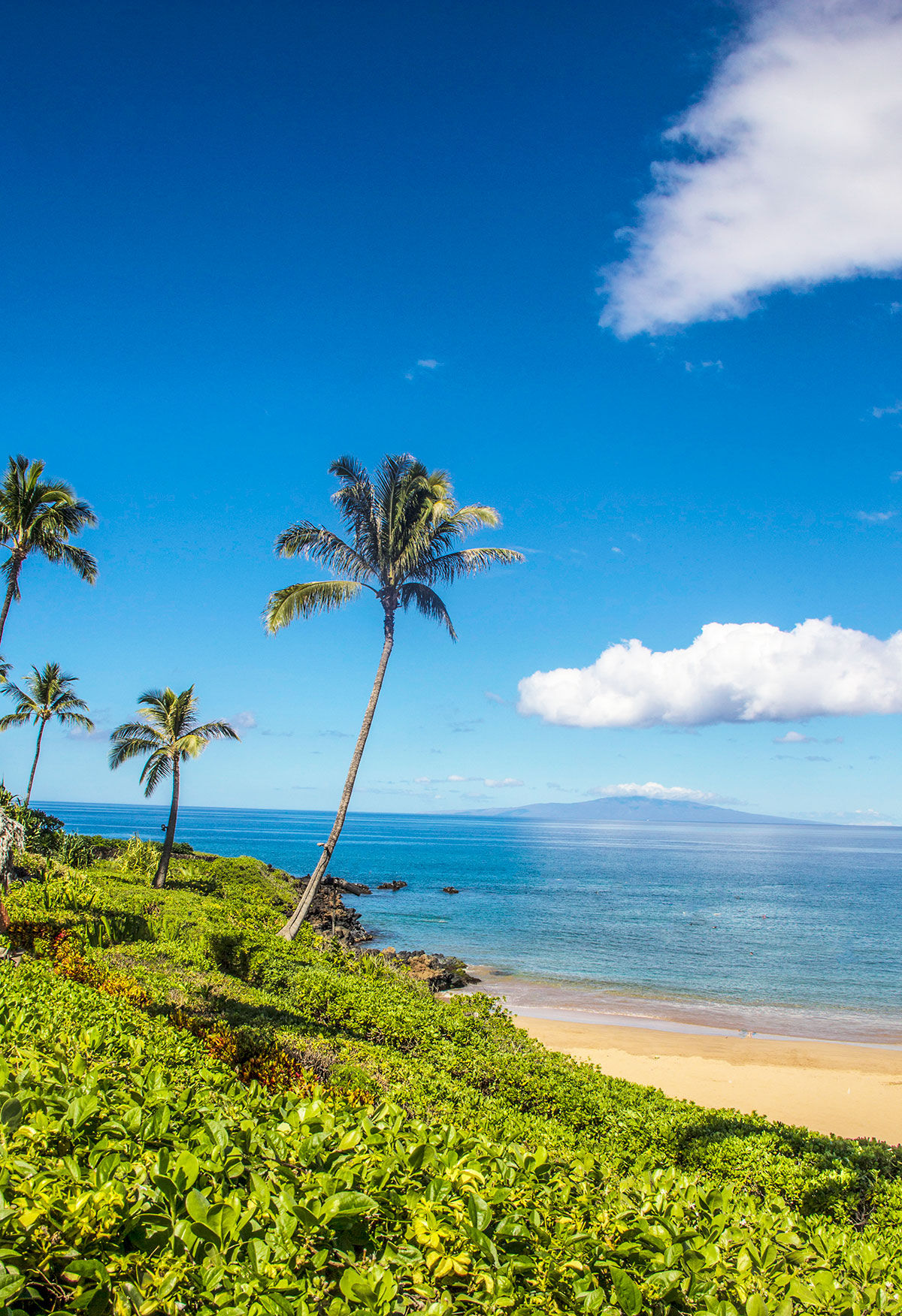 Four-Seasons-Maui-Beach