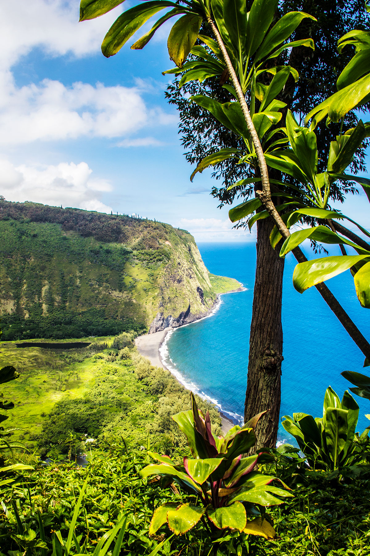 the-beauty-of-Waipio-Valley