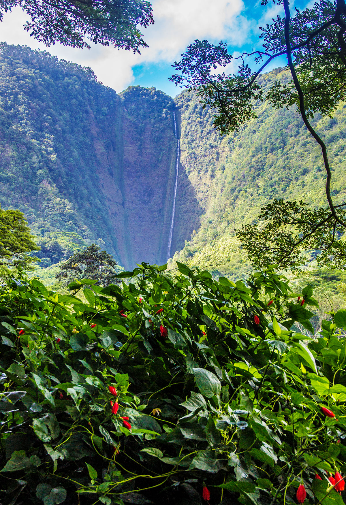 the-waterfalls-of-waipio-valley