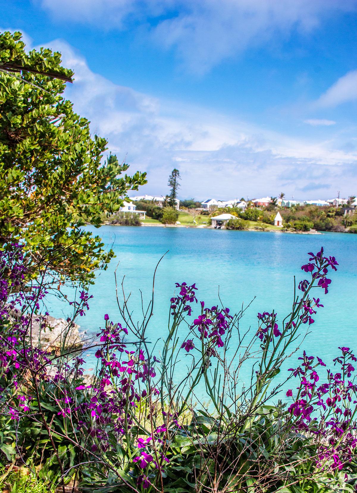 The-View-from-Bermuda-Aquarium