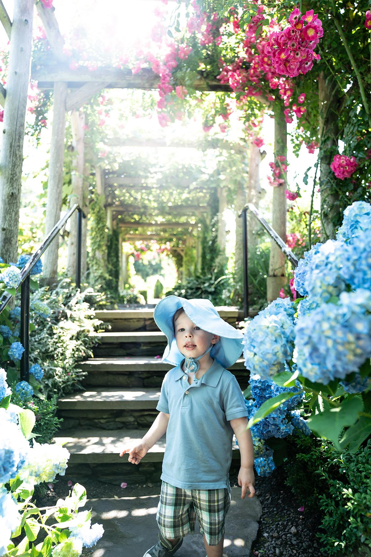 Green-Animals-Topiary-Garden-RI