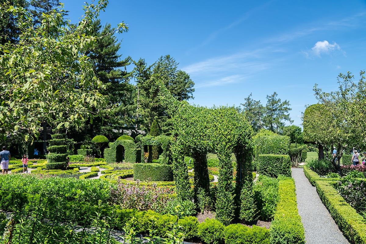 Green-Animals-Topiary-Garden-in-Newport-RI