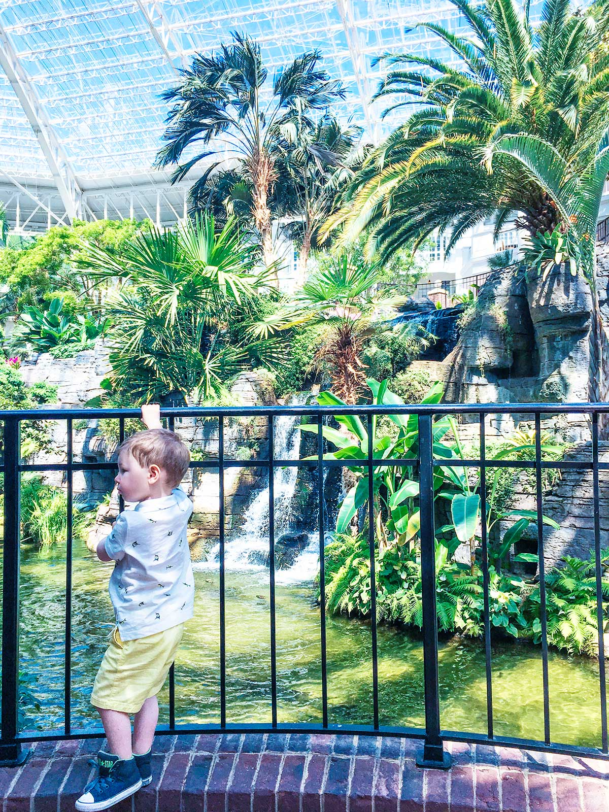 Inside-the-Gaylord-Opryland-Resort-Nashville