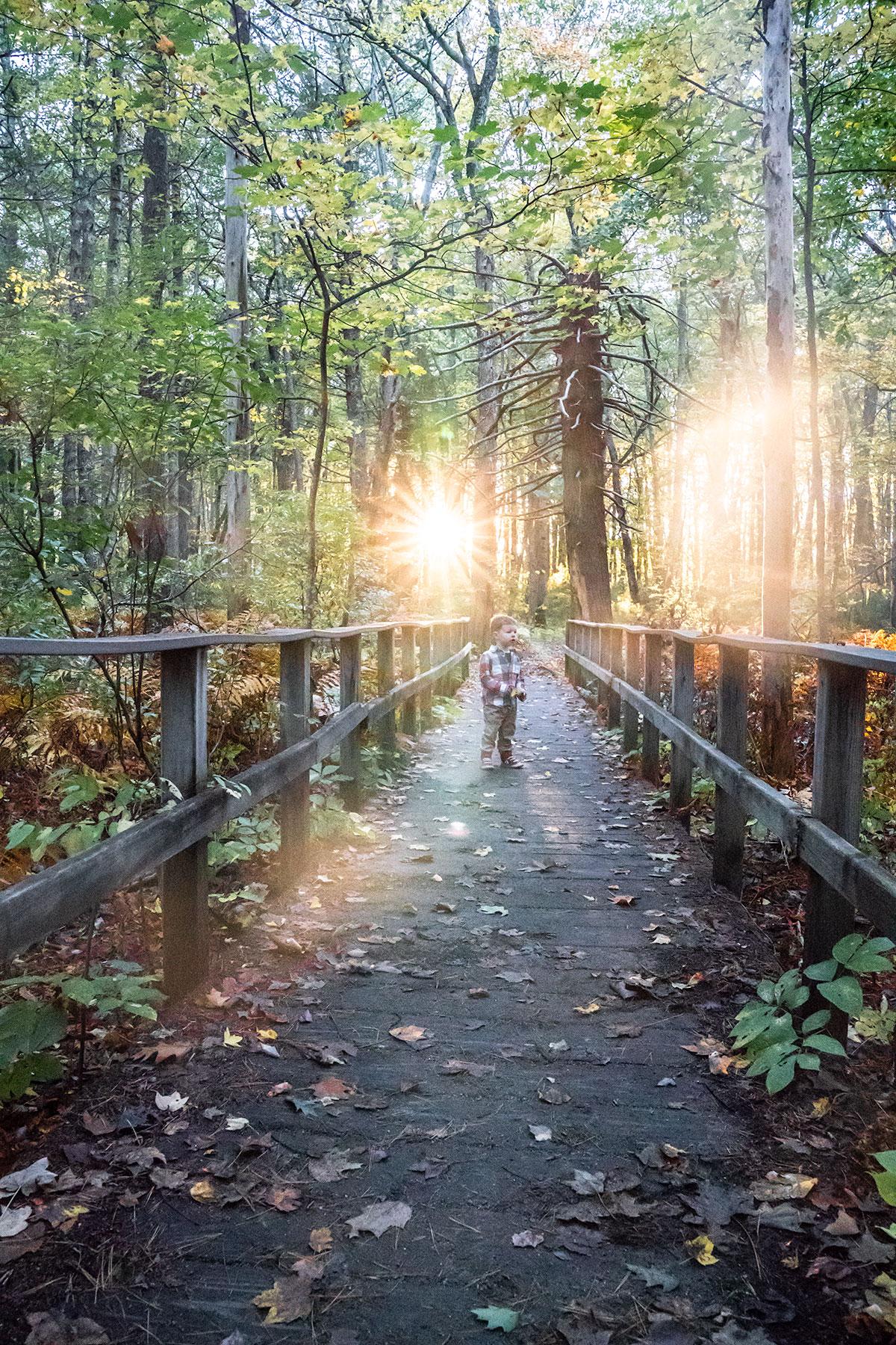 Autumn-at-Rachel-Carson-Refuge-Maine