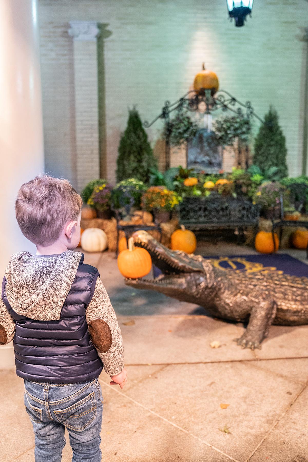 Alligator-Display-The-Jefferson-Hotel-Richmond