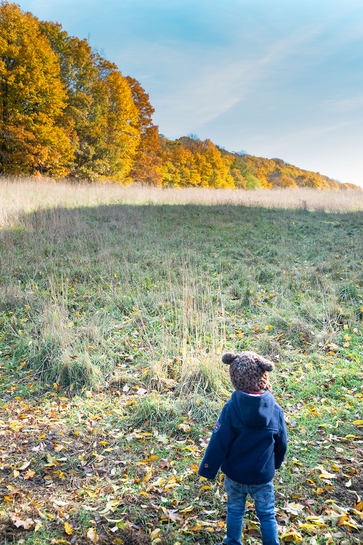 Beautiful-Fall-Foliage-at-Old-Town-Hill-Newbury