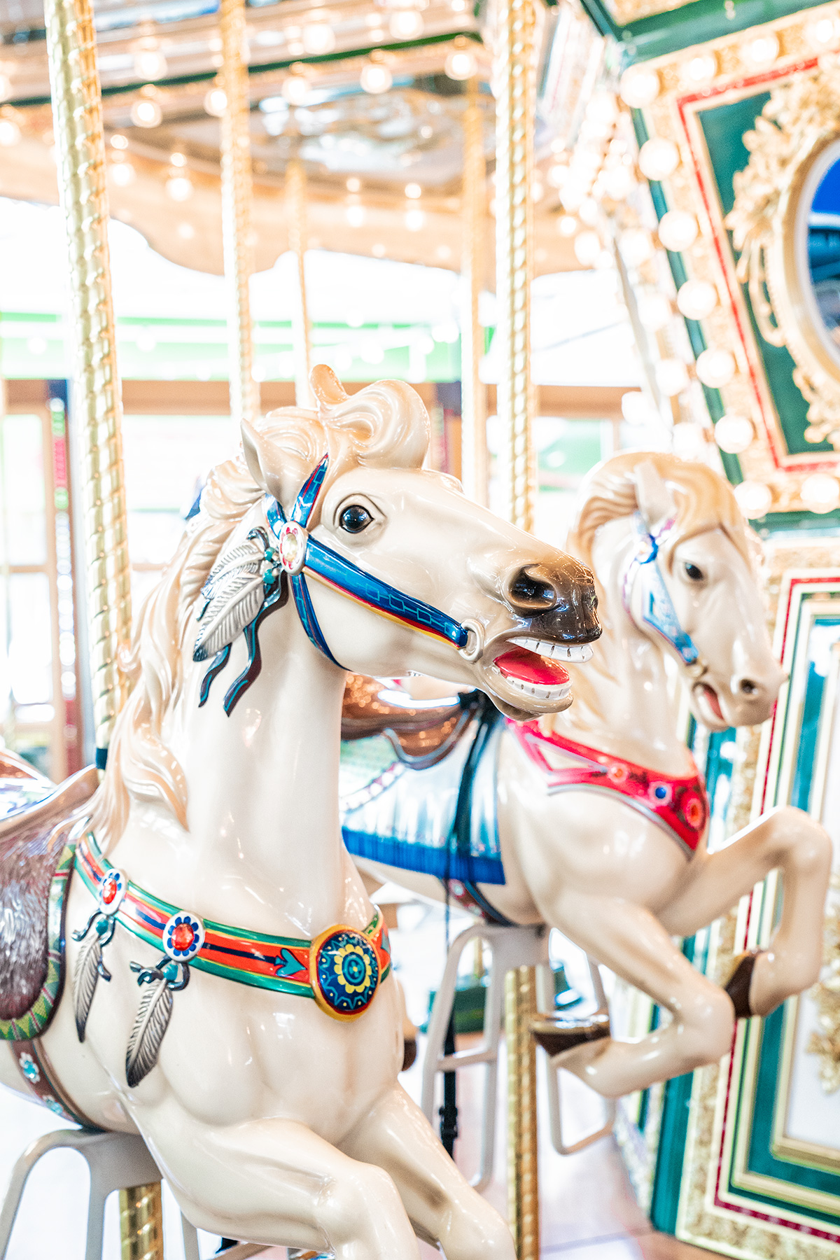 Carousel-at-Childrens-Museum-of-Richmond