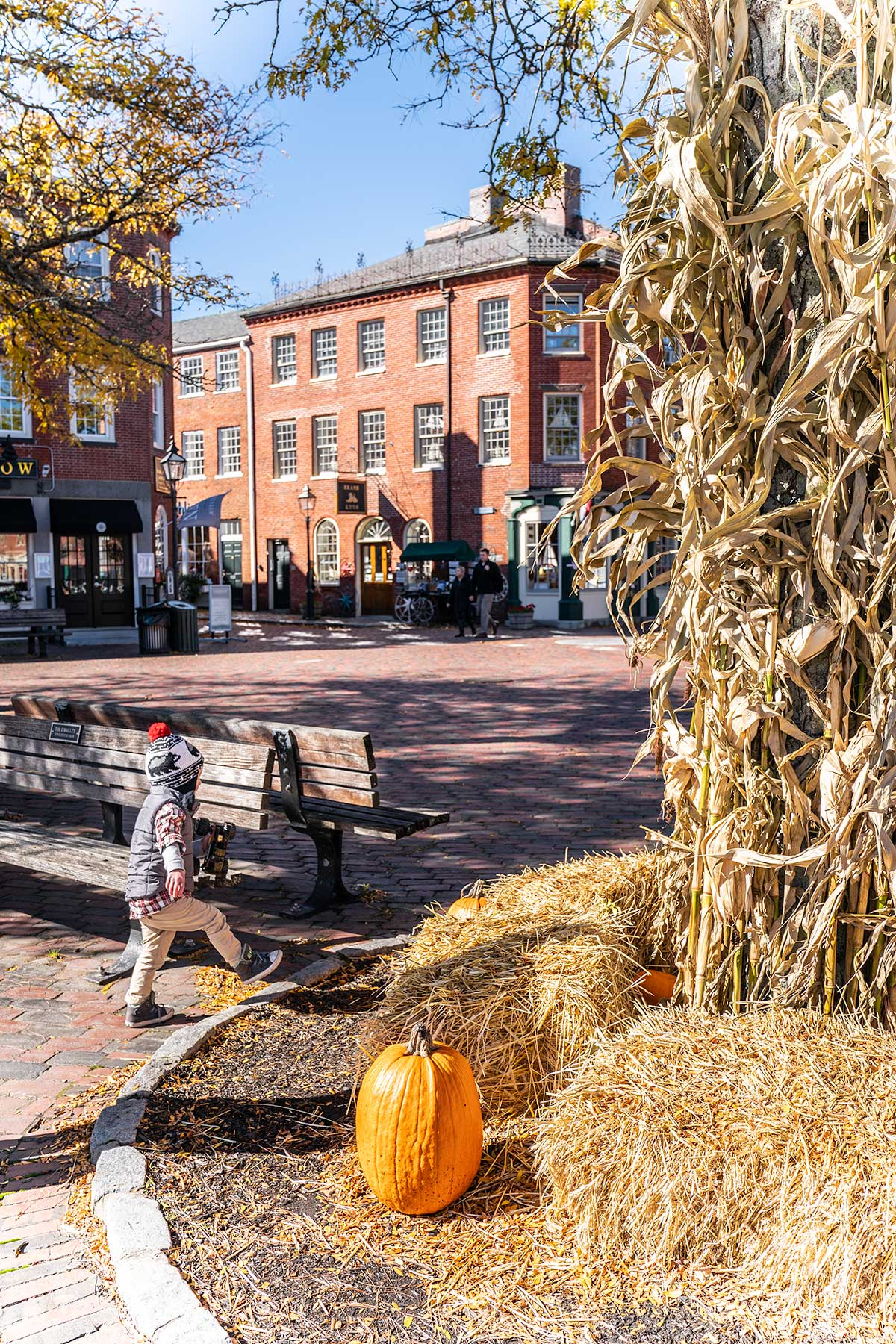 Downtown-Newburyport-in-Fall-Massachusetts