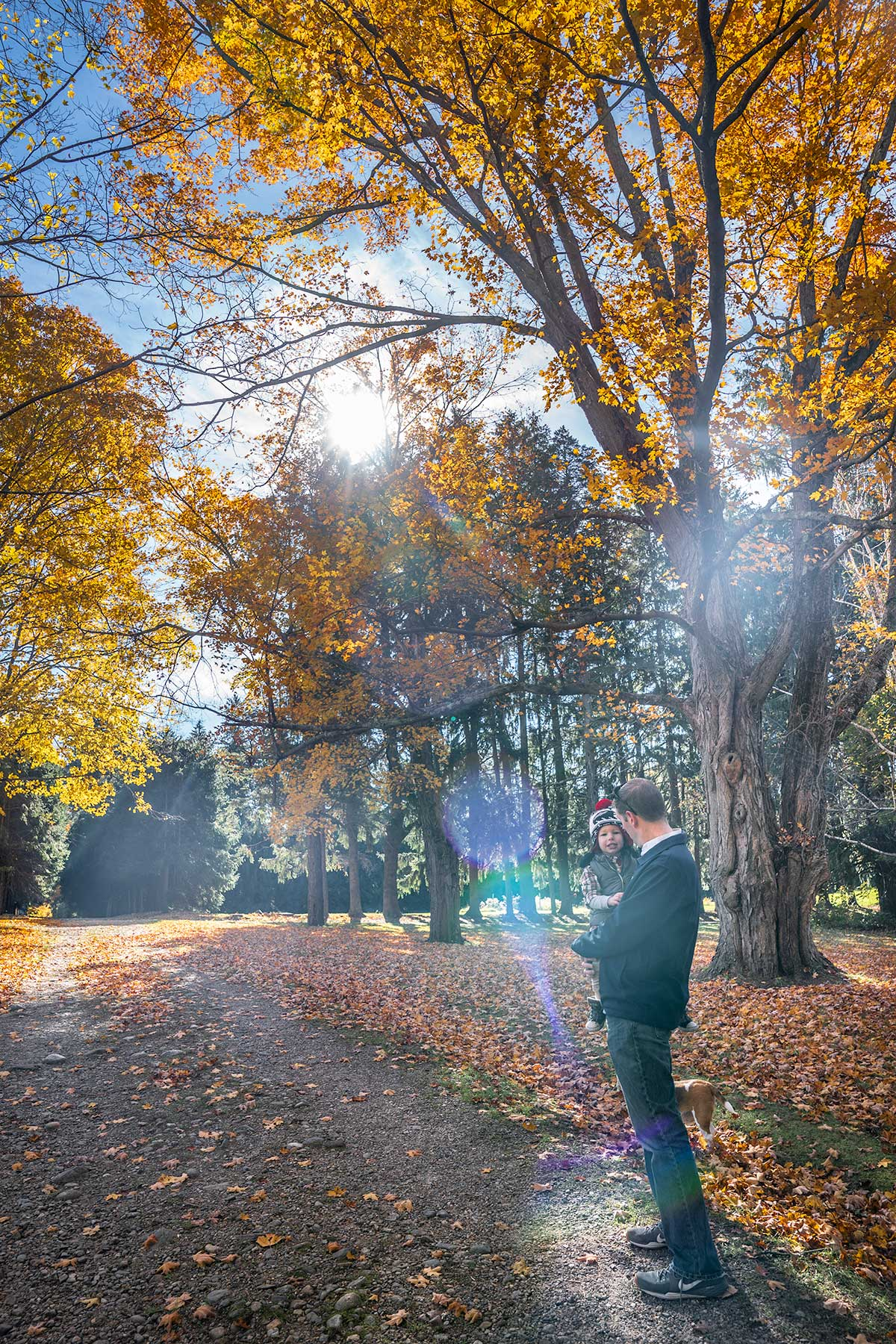 The-Day-Trip-From-Boston-You-Cant-Miss-in-Fall