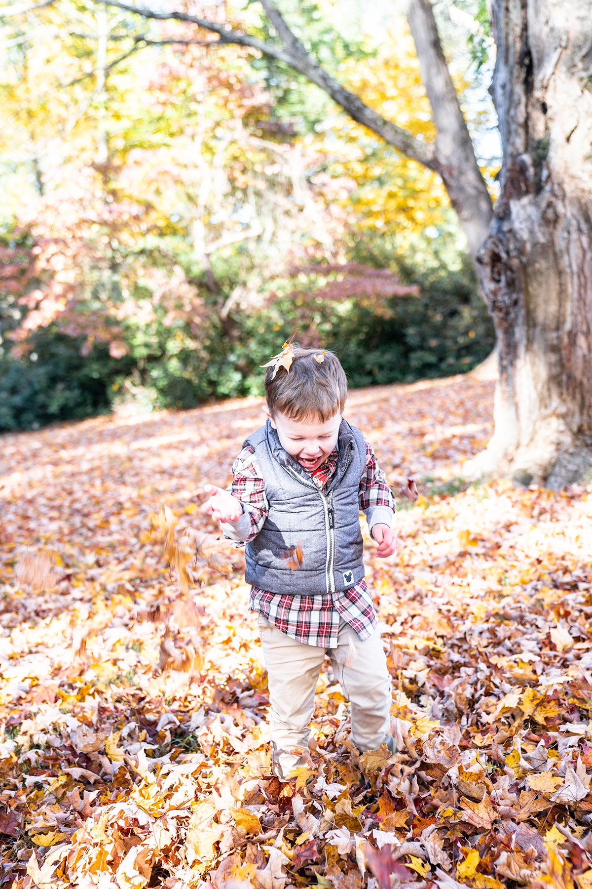 Trevor-with-Fall-Leaves-Maudslay-Newburyport