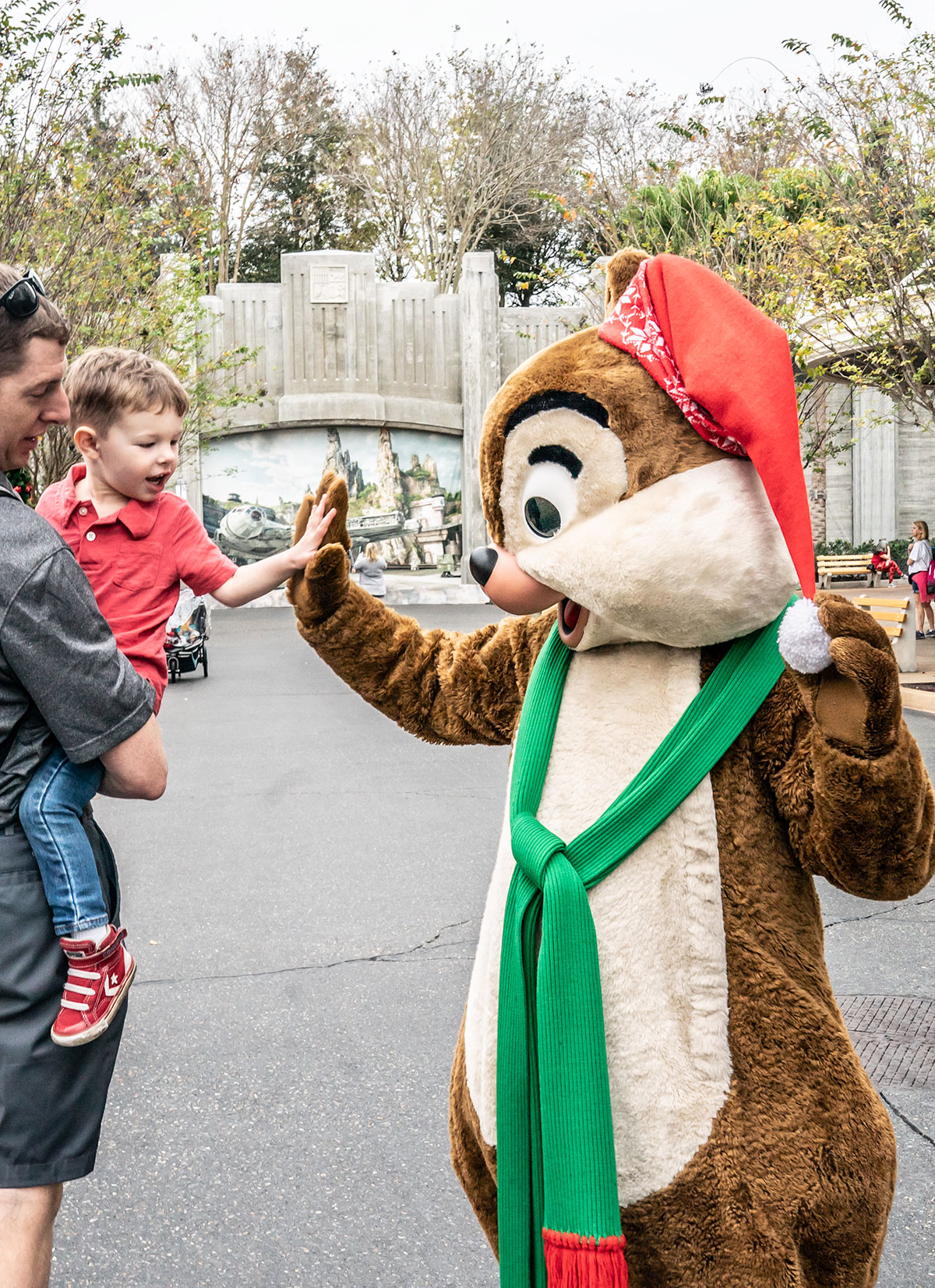 Christmas-Chip-and-Dale-Walt-Disney-World