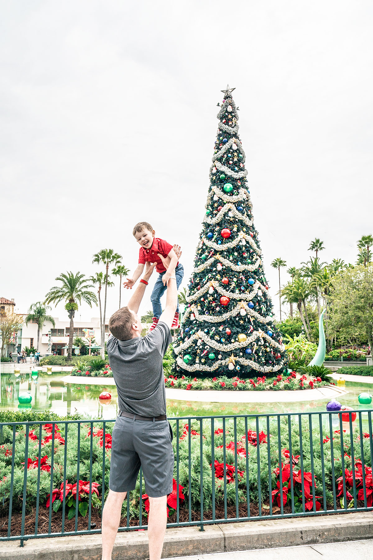 Walt-Disney-World-at-Christmas-Part-III-of- ...