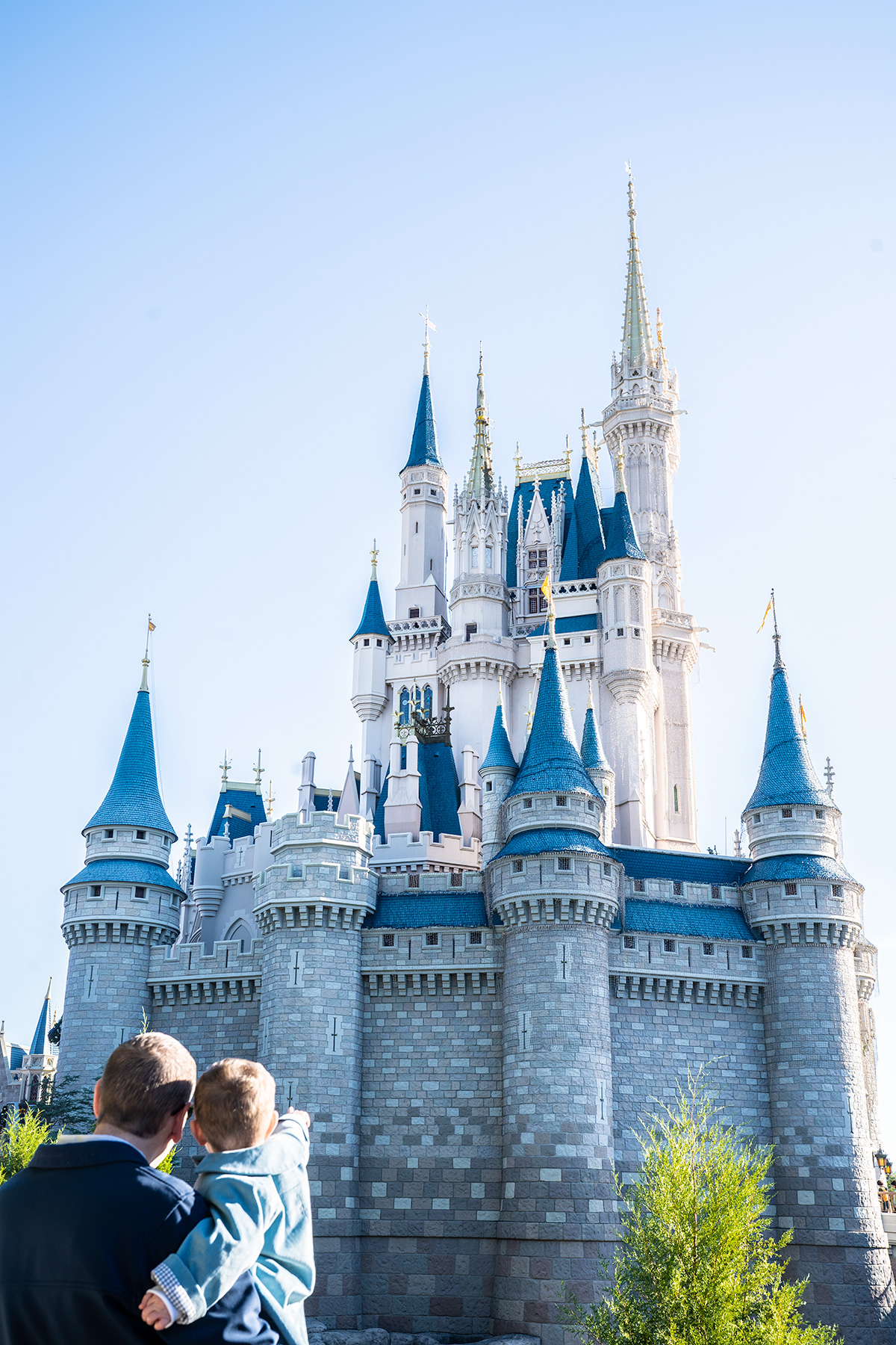 Cinderella-Castle-Walt-Disney-world-at-Christmas
