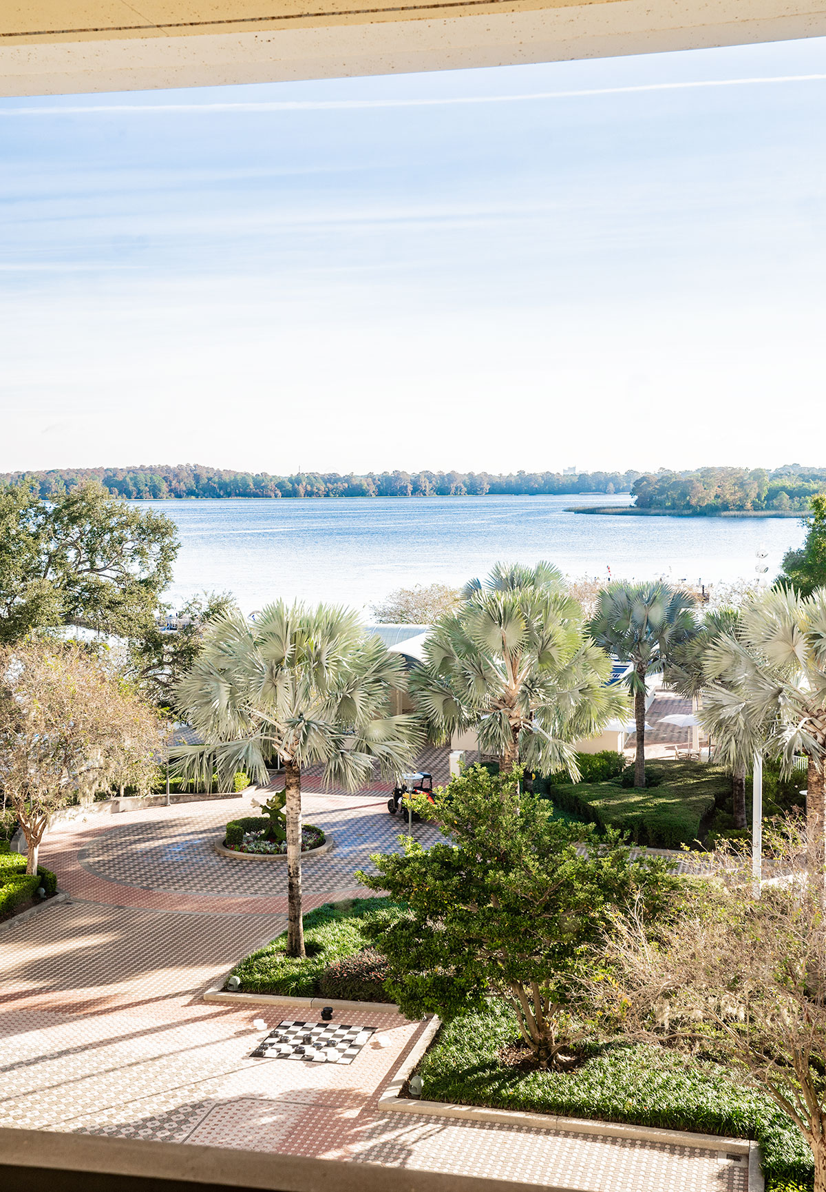 View-from-Sky-Walk-Bridge-Disneys-Contemporary-Resort