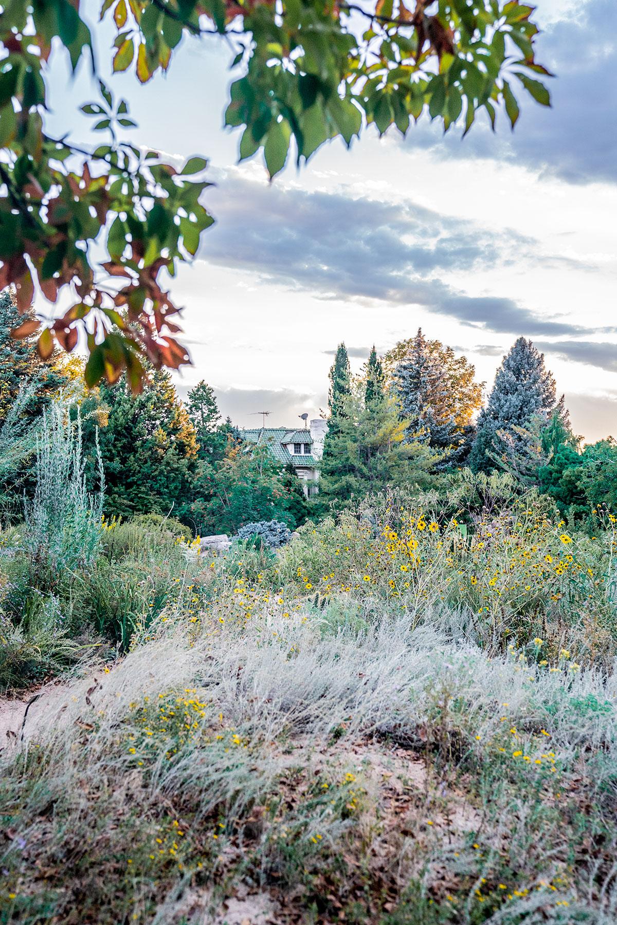 Beautiful-Denver-Botanic-Gardens