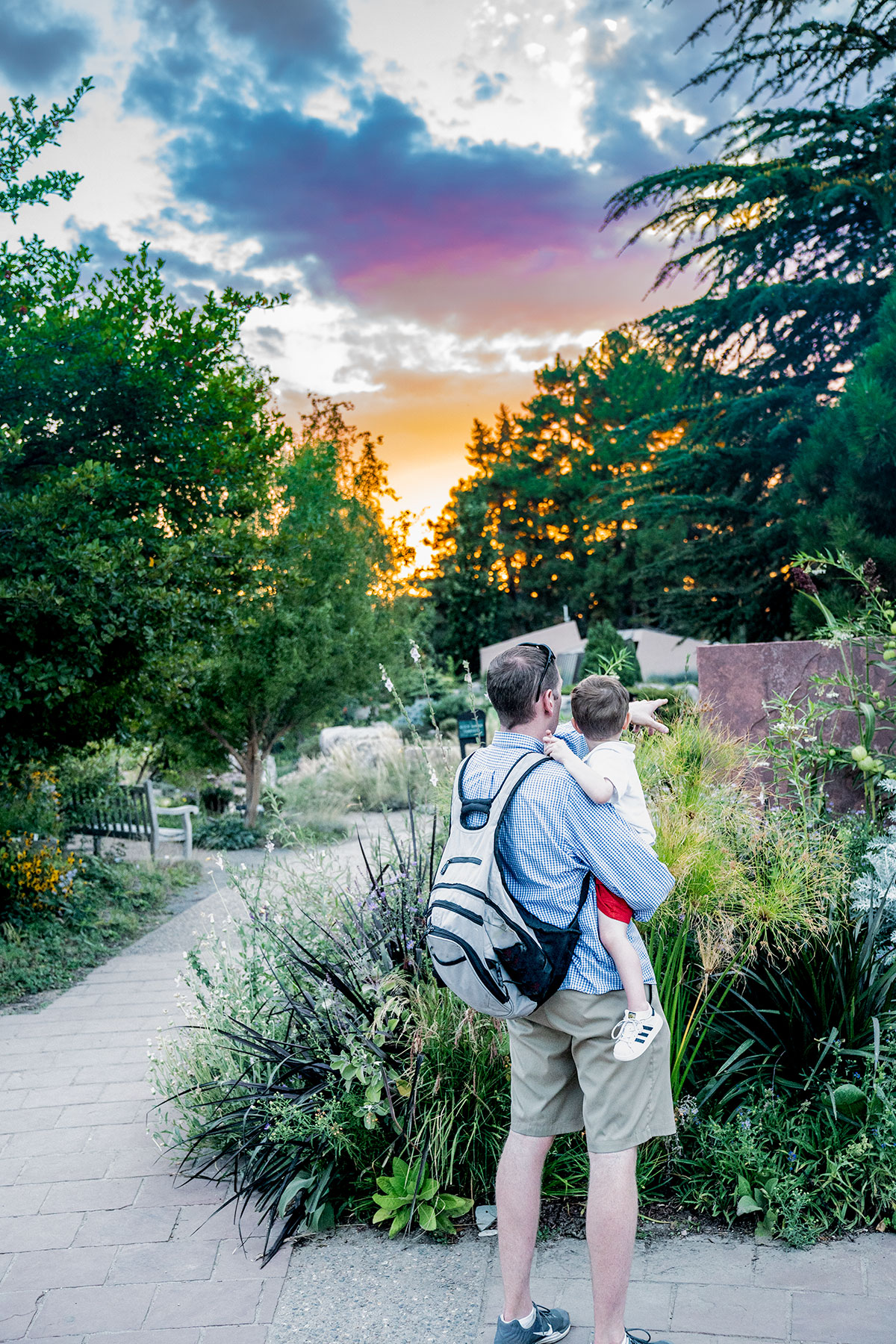 Sunset-at-Denver-Botanic-Gardens