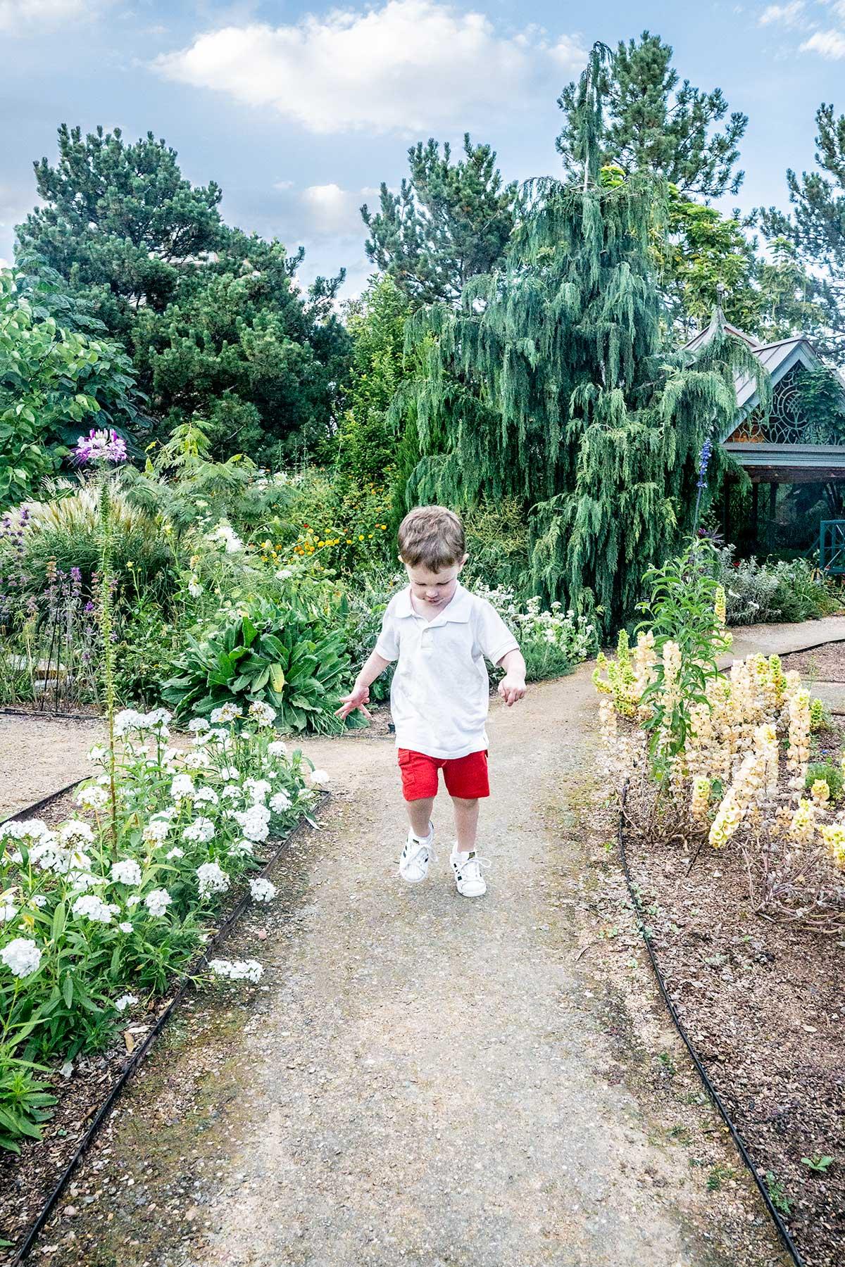 Walking-the-Paths-of-Denver-Botanic-Gardens