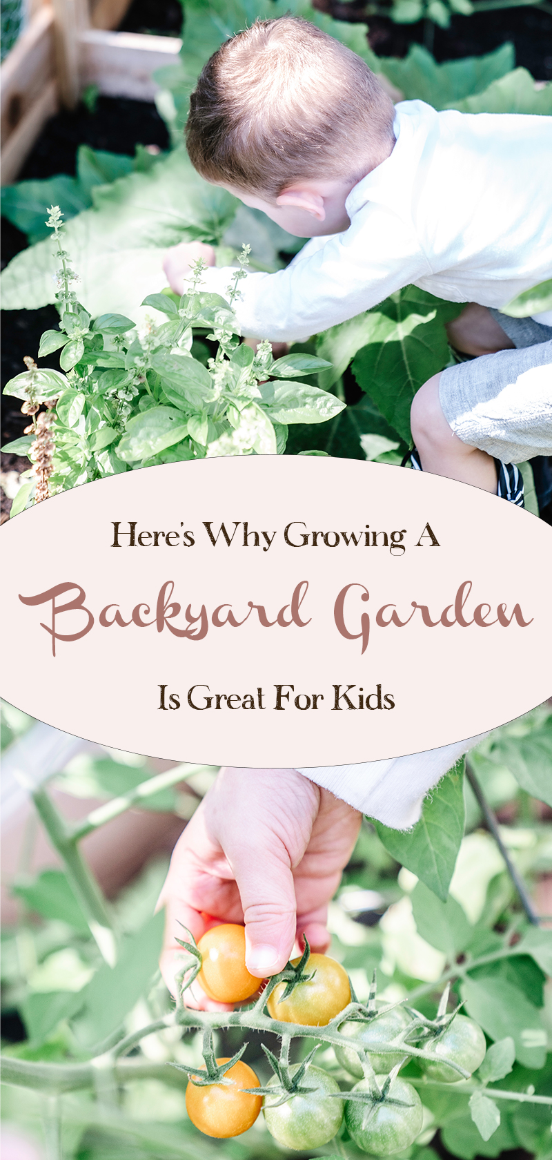 Heres-Why-Growing-a-Backyard-Vegetable-Garden-Is-Great-for-Kids