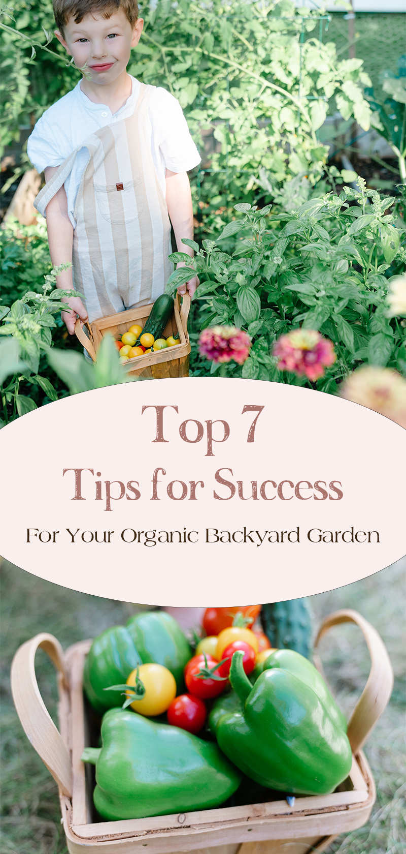 Top-7-Tips-For-Success-Organic-Backyard-Garden